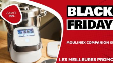 Moulinex Companion XL Black Friday : les meilleures offres et promos